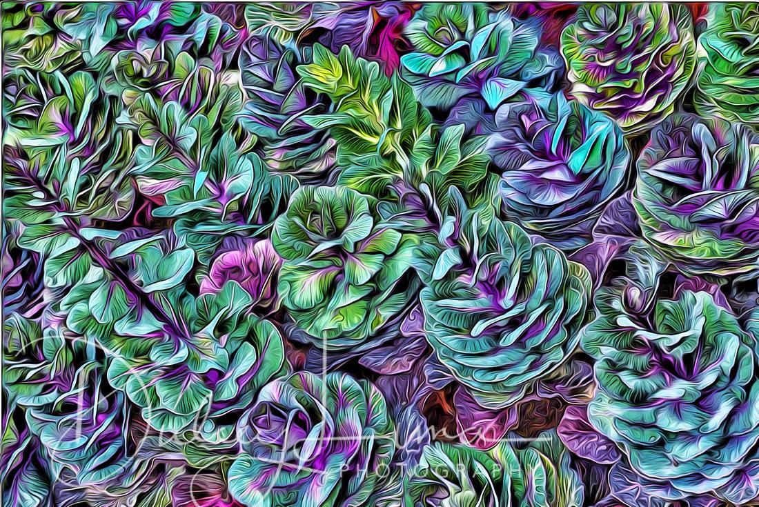 Technicolor Kale