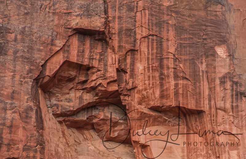 Sheer Rock Cuts in Sandstone at Zion National Park